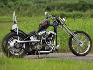 bike9_1.jpg